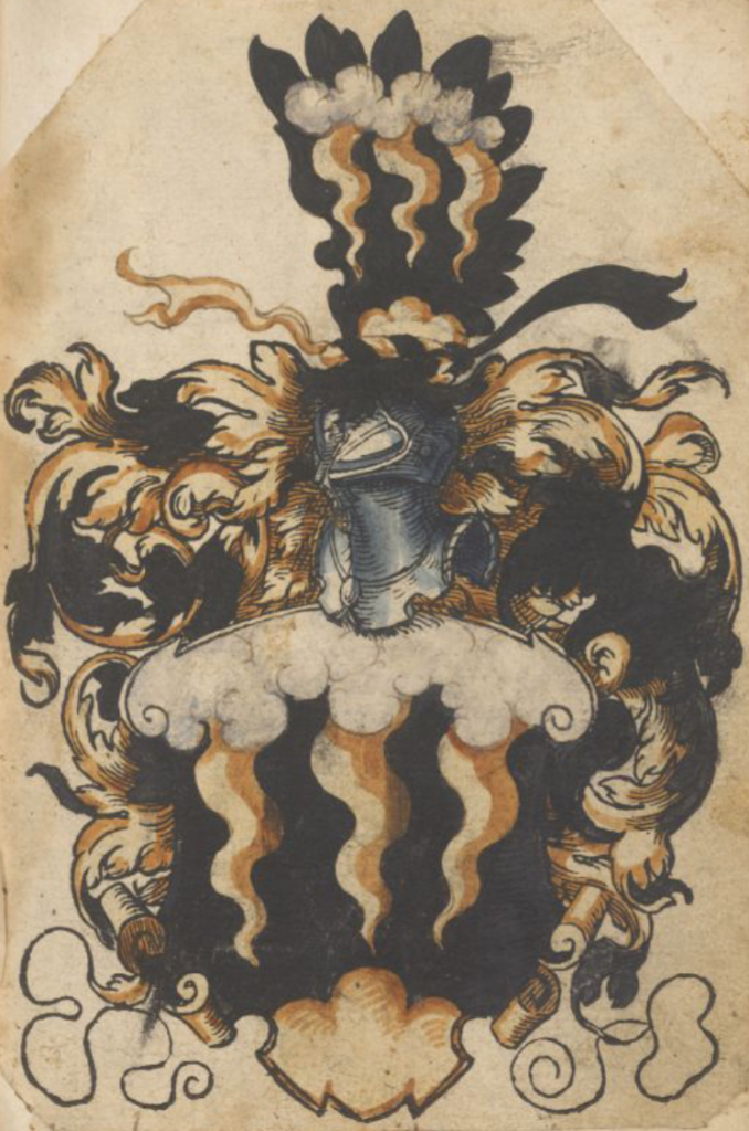 """Image of a coat of arms from Bernhard Stiber's """"Stammbuch"""" of 1588-1594, page 54.  It depicts a bank of pale grey clouds at the top of a shield: three wavy golden lightning bolts descend towards a three-lobed mount at the bottom of the shield.  The shield is surmounted by a helmet, the crest of which is a black bird's wing on which is drawn the clouds and lightning bolt motif."""